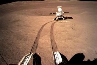 """أول بذرة قطن تنبت على القمر عبر المسبار الصيني """"تشانغ آه -4"""""""