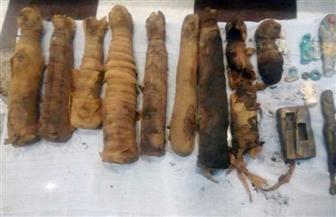 ضبط 21 قطعة أثرية بمنزل عامل بسوهاج