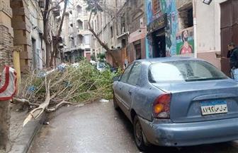 خسائر في الممتلكات بسبب عواصف الفيضة الكبرى بالإسكندرية | صور