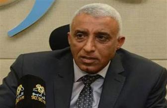 رئيس حي العجوزة: سقوط شجرة عملاقة بشارع شهاب دون وقوع إصابات