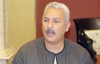 نقيب عام الفلاحين: مصر صدرت 113 ألف طن عنب العام الماضي