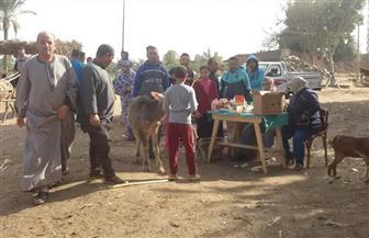 """""""مستقبل وطن"""" بالقليوبية ينظم قافلة بيطرية في مركز طوخ"""