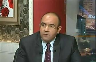 """رئيس """"اقتصادية الحركة الوطنية"""": مشروع الصوب الزراعية يحقق التنمية الزراعية المستدامة لمصر"""
