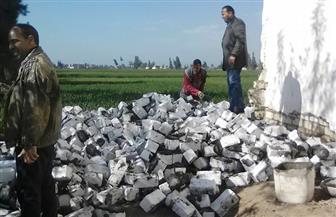 إزالة 6 حالات تعد على الأراضي الزراعية بالبحيرة  صور