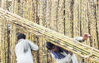 رئيس النواب ينتقد وزير التموين لتجاهله منتجات قصب السكر