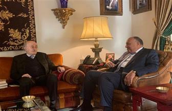 سامح شكري يلتقي وليد جنبلاط رئيس الحزب التقدمي الاشتراكي اللبناني   صور