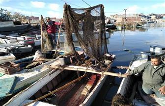 محافظ كفرالشيخ يتابع حملة إزالة التعديات على بحيرة البرلس | صور