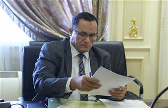 نائب بالبرلمان: توسيع شبكة التضامن الاجتماعي عبر الاستجابة لمبادرة الرئيس السيسي