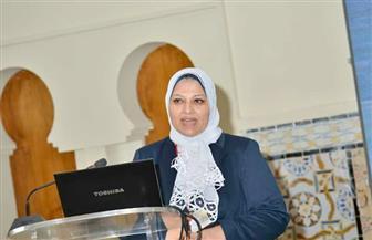 170 مليون جنيه لإنشاء الكابل الأرضي شرق القاهرة / محطة سكاكين المستثمرين