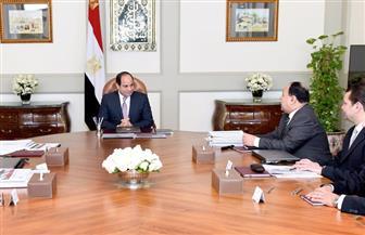 الرئيس السيسي يوجه بالاستمرار في إجراءات التنفيذ الناجح لبرنامج الإصلاح الاقتصادي | صور