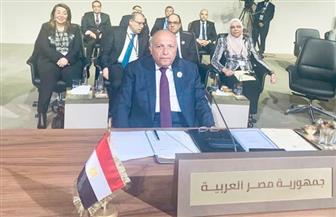 شكري أمام القمة العربية: مكافحة الفقر والبطالة والإرهاب تحديات كبيرة علينا مواجهتها   نص كامل