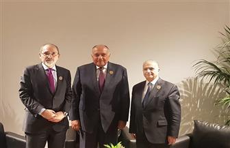اجتماع ثلاثي لوزراء خارجية مصر والأردن والعراق في بيروت   صور