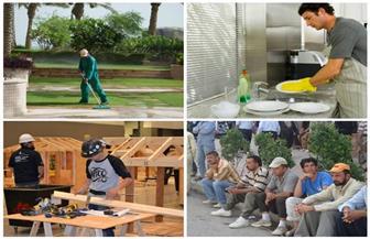 عمل بها الأنبياء.. لماذا يرفض الشباب العمل فى هذه المهن ويلهثون وراءها في الخارج؟ | فيديو