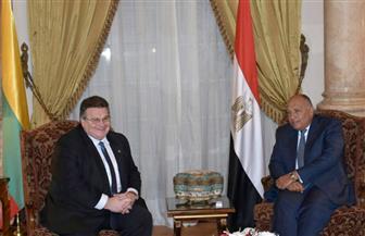 بدء جلسة المباحثات الثنائية بين وزير الخارجية ونظيره الليتواني| صور