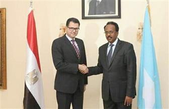 السفير المصري في الصومال يقدم أوراق اعتماده للرئيس الصومالي