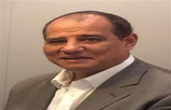 اتحاد الدواجن: بعد البحرين.. قريبا رفع الحظر عن تصدير البيض المصري للسعودية والإمارات وعمان