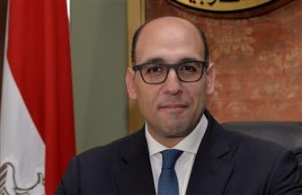 مصر تفوز بأغلبية ساحقة بعضوية مجلس السلم والأمن الإفريقي للفترة ٢٠٢٠ – ٢٠٢٢