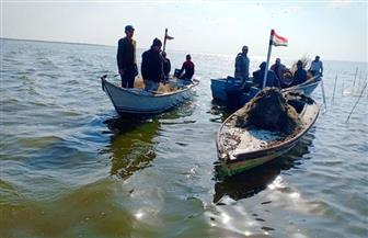 محافظ كفرالشيخ يتابع حملة إزالة التعديات على بحيرة البرلس| صور