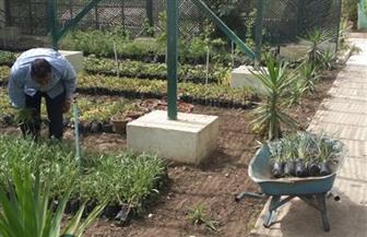تحويل مشتل وزارة البيئة إلى نموذج للأنشطة المستدامة ضمن مبادرة الحوار المجتمعي