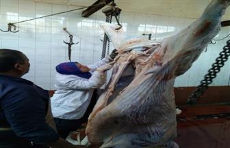 """طوارئ بالمجازر وتكثيف الرقابة على الأسواق في الغربية استعدادا لـ""""عيد الفطر"""""""