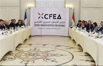 تفاصيل اجتماع مجلس الأعمال المصري الفرنسي لدفع العلاقات التجارية والاستثمارية بين البلدين