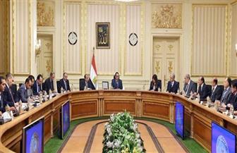 رئيس الوزراء لرؤساء المجالس التصديرية: الدولة تولي أهمية كبرى لتشجيع الصادرات للأسواق الخارجية