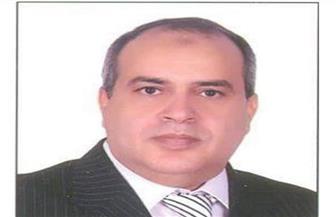 """""""عبدالجواد"""": 5 نقاط يجب على القطاع الخاص تفعيلها لإنجاح مبادرة """"حياة كريمة"""""""
