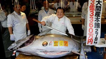 في اليابان.. سمكة تونة بـ3 ملايين دولار