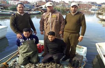 محافظ كفرالشيخ يتابع إزالة التعديات على بحيرة البرلس.. واستمرار الحملات لمنع الصيد الجائر | صور