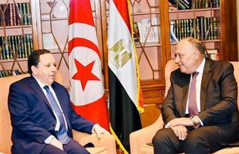 وزير الخارجية يلتقي نظيره التونسي في القاهرة.. ويبحث آفاق العلاقات المشتركة والقضايا الإقليمية| صور
