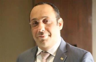 """أحمد الفندي: التركيز على الصناعات المغذية والصغيرة يحقق نجاحا لمبادرة """"حياة كريمة"""""""