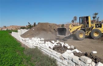 إزالة 727 حالة تعد على الأراضي الزراعية وأملاك الدولة في الشرقية