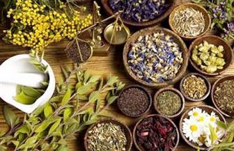 تصدير 12.5 ألف طن نباتات طبية وعطرية إلى 86 دولة خلال الربع الأول من العام الحالي