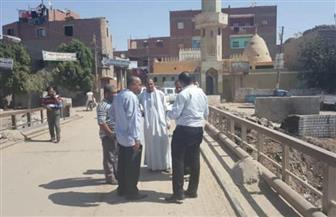 محافظ أسيوط: وفد مجلس الوزراء يزور القرى الأكثر احتياجا لرصد متطلبات الأهالي | صور