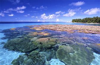 """""""جزر المارشال"""".. دولة البراكين والشعب المرجانية تعلن تآكل أراضيها جراء تغيرالمناخ"""