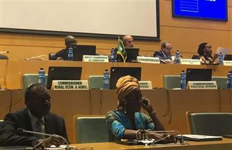 الاتحاد الإفريقي يناقش اللاجئين والنازحين داخليا