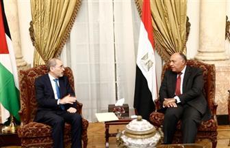 وزير الخارجية يستقبل نظيره الأردني لمناقشة العدوان التركي على سوريا