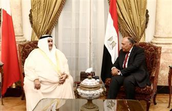 سامح شكري يستقبل وزير خارجية البحرين| صور