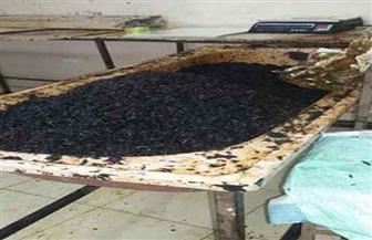 غلق مصنعين لتصنيع وتعبئة العسل والمخلل لمخالفة شروط الترخيص بالشرقية