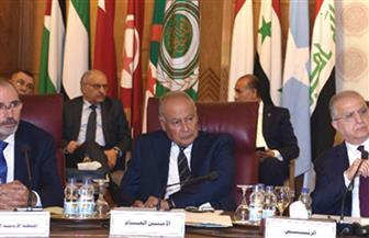 نص كلمة أمين عام جامعة الدول العربية بشأن العدوان التركي على سوريا