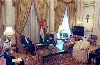 وزراء خارجية مصر و5 دول عربية يتشاورون حول العملية التركية في سوريا