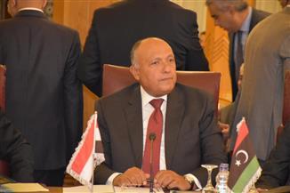 شكري يؤكد خلال الاجتماع الوزاري العربي الطارئ على حق جميع السوريين في مقاومة العدوان التركي