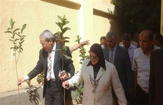 وكيلة تعليم كفر الشيخ تغرس أشجارا مثمرة في 8 مدارس بمركز قلين | صور