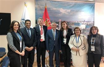 رئيس لجنة العلاقات الخارجية بمجلس النواب المصري يلتقى نظيره الصربي |صور