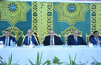 محافظ الغربية: احتفالية مولد السيد البدوي رسالة إلى العالم أن مصر آمنة | صور