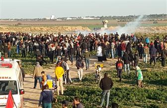 اعتصام لمزارعين فلسطينيين في غزة
