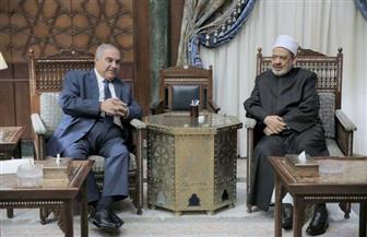 الإمام الأكبر: قضاة مصر حصن أمان للوطن ومصدر طمأنينة للمواطنين