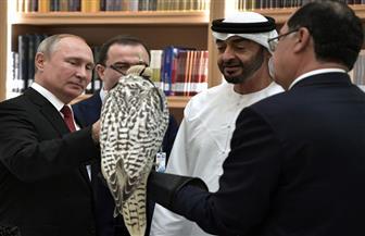 روسيا: صقور بوتين لزعماء الخليج نقلت بطرق قانونية