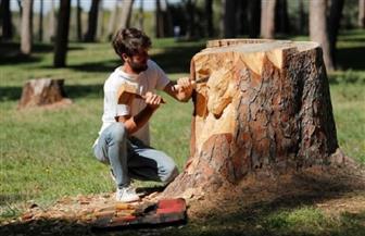 فنان إيطالي يحول جذوع الأشجار الميتة في روما إلى منحوتات فنية