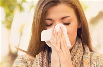 استشاري صدر يكشف تأثير الحشرات المنزلية على مرضى الحساسية وكيفية مقاومتها